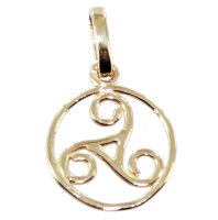 Pendentif Or Jaune Triskell encerclé - Taille 2
