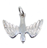 Pendentif Argent Colombe protestante - Taille 2