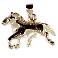 Pendentif Or Jaune Trotteur - Taille 2